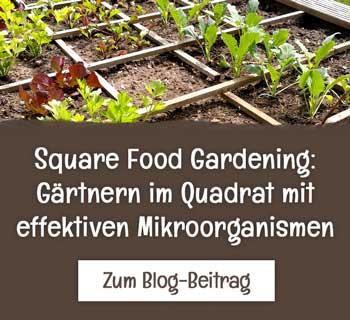 Square Foot Gardening mit EM