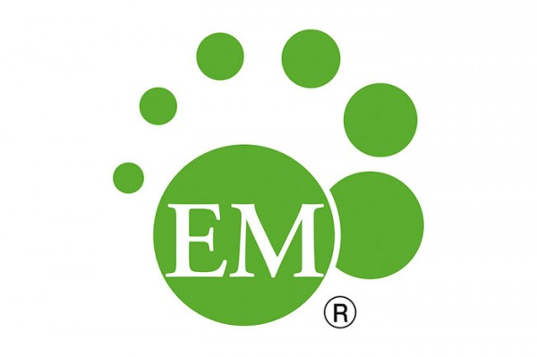 EM-Logo